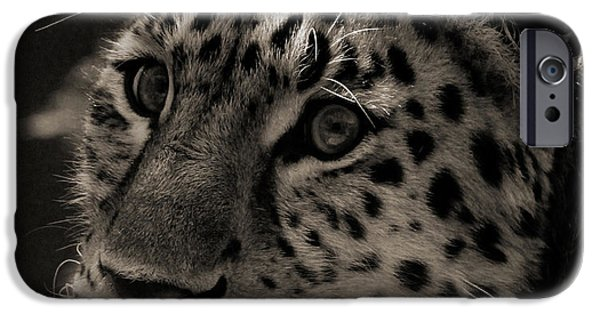 Amur Leopard IPhone 6s Case