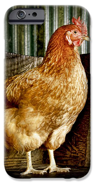 iPhone 6s Case - A Chicken Named Rembrandt by Holly Kempe