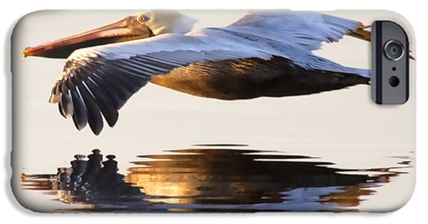 Pelican iPhone 6s Case - A Closer Look by Janet Fikar