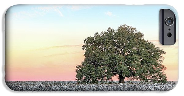 A Deeply Southern Sunrise IPhone 6s Case by JC Findley