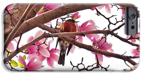 A Songbird In The Magnolia Tree - Square IPhone 6s Case by Rona Black