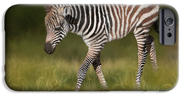 A Walk On The Wild Side IPhone 6s Case by Donna Kennedy