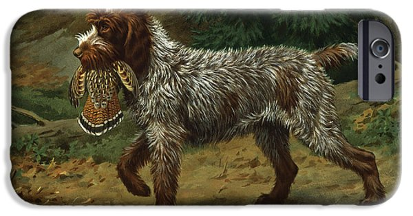 A Wire-haired Pointing Griffon Holds IPhone 6s Case
