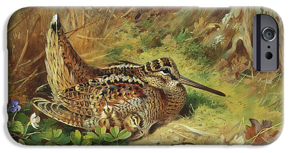 A Woodcock And Chicks IPhone 6s Case by Archibald Thorburn