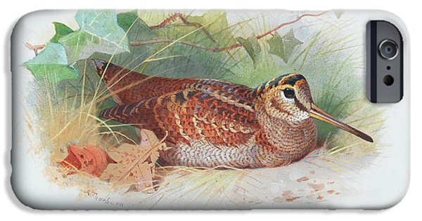Woodcock iPhone 6s Case - A Woodcock Resting by Archibald Thorburn