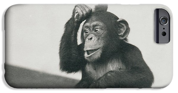A Young Chimpanzee Playing With A Brush IPhone 6s Case