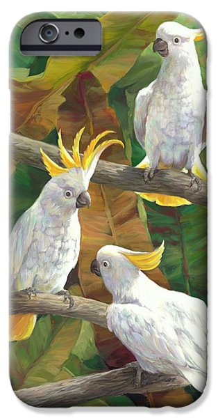 Cockatoo iPhone 6s Case - Above It All by Laurie Hein