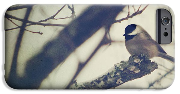 Chickadee iPhone 6s Case - Against The Wind by Amy Tyler