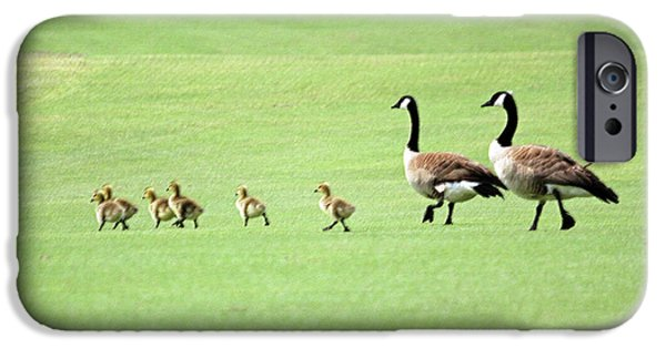 Gosling iPhone 6s Case - All In The Family by Suzanne Gaff