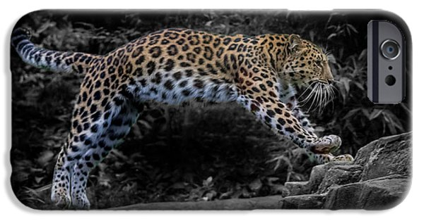 Amur Leopard On The Hunt IPhone 6s Case