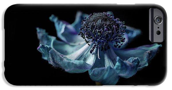Ant iPhone 6s Case - Ant Explorer by Garry Solomon
