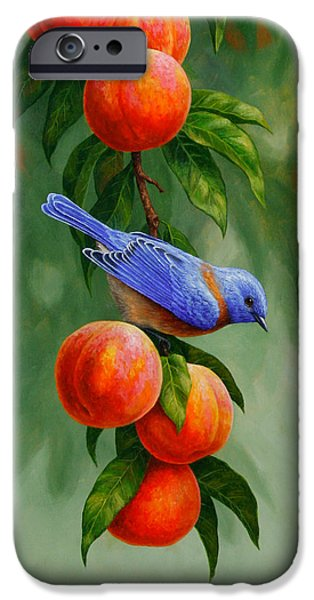 Bird Painting - Bluebirds And Peaches IPhone 6s Case