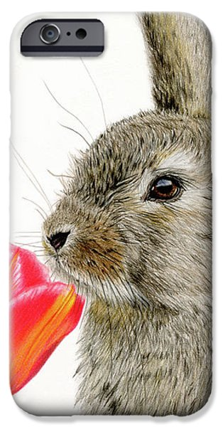 Smells Like Spring IPhone 6s Case