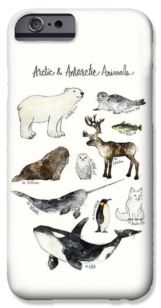 Arctic And Antarctic Animals IPhone 6s Case by Amy Hamilton