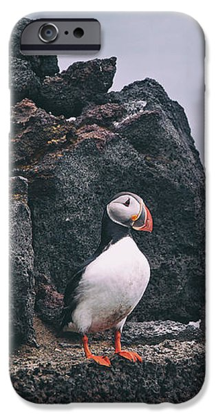Puffin iPhone 6s Case - Atlantic Puffin by Happy Home Artistry
