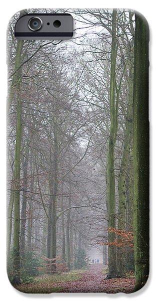 Autumn Woodland Avenue IPhone 6s Case by Gary Eason