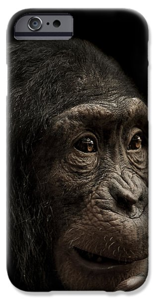 Chimpanzee iPhone 6s Case - Baffled by Paul Neville