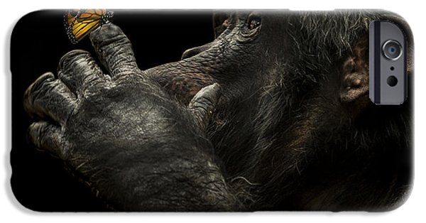 Chimpanzee iPhone 6s Case - Beauty And The Beast by Paul Neville