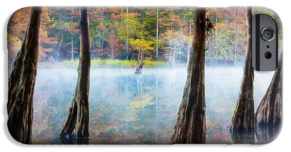 Beavers Bend Cypress Grove IPhone 6s Case by Inge Johnsson