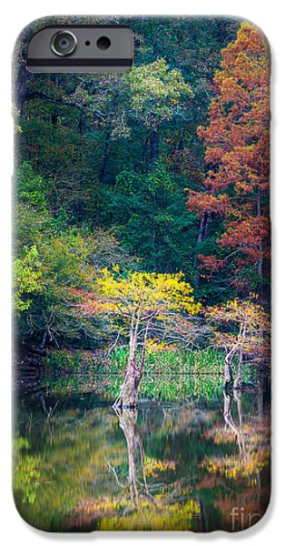 Beaver iPhone 6s Case - Beavers Bend Trees by Inge Johnsson