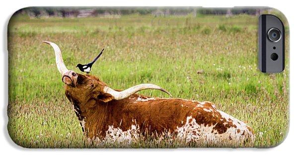 Best Friends - Texas Longhorn Magpie IPhone 6s Case