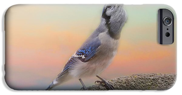 Bluejay iPhone 6s Case - Big Mouthful by Susan Capuano