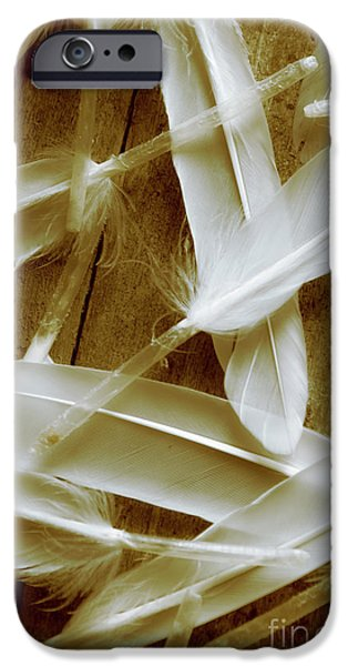 Dove iPhone 6s Case - Bird-less Of A Feather by Jorgo Photography - Wall Art Gallery