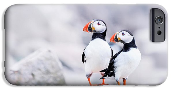 Puffin iPhone 6s Case - Birdland by Evelina Kremsdorf