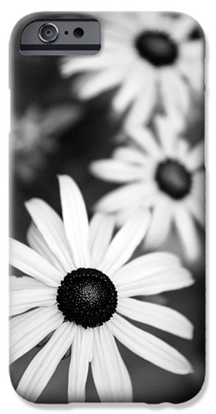 IPhone 6s Case featuring the photograph Black And White Daisies by Christina Rollo