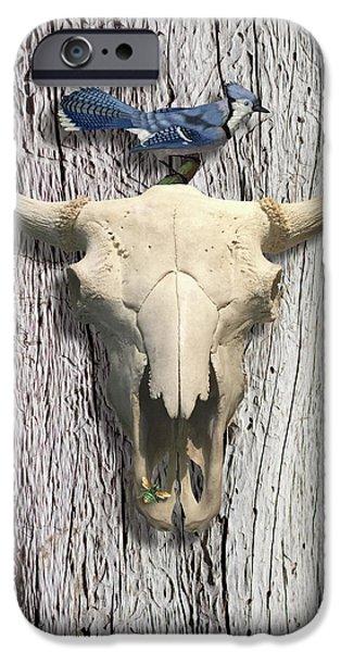 Bluejay iPhone 6s Case - Bluejay And The Buffalo Skull by Gary Grayson