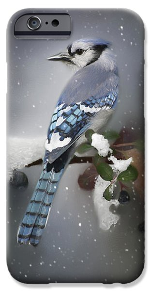 Bluejay iPhone 6s Case - Bluejay In Winter by Lena Auxier