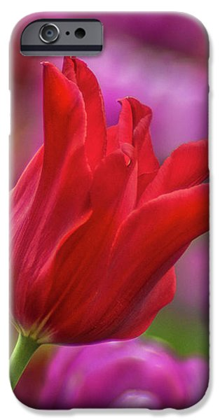 IPhone 6s Case featuring the photograph Brazenly Delicate by Bill Pevlor