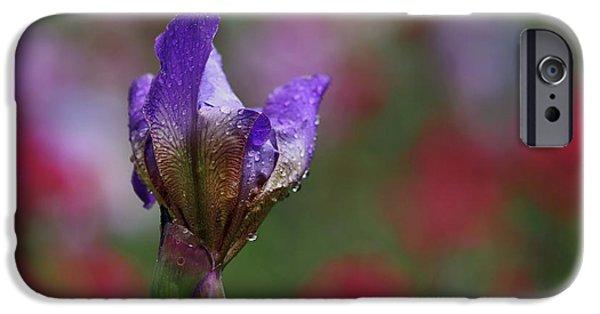 Budding Purple Iris IPhone 6s Case