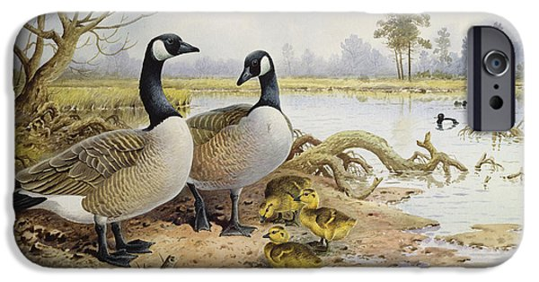 Canada Geese IPhone 6s Case