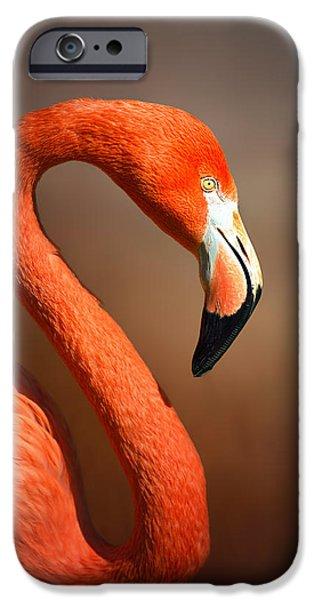 Animals iPhone 6s Case - Caribean Flamingo Portrait by Johan Swanepoel