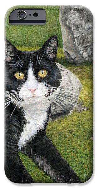 Color Pencil iPhone 6s Case - Cat In A Rock Garden by Sarah Batalka