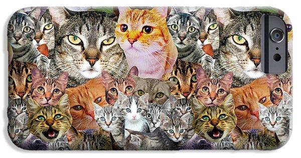 Cats IPhone 6s Case by Gloria Sanchez