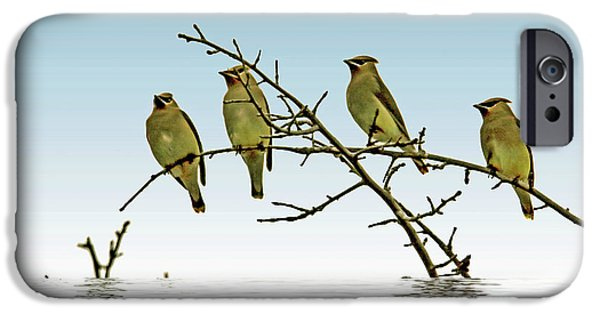 Cedar Waxwings On A Branch IPhone 6s Case by Geraldine Scull