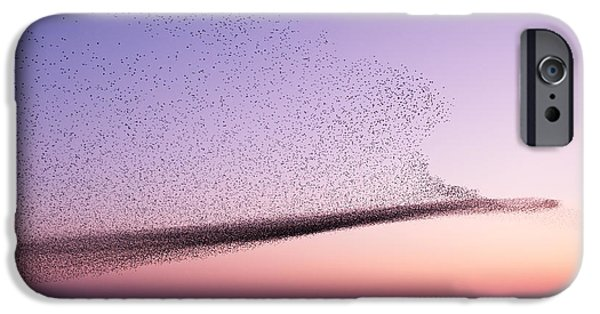 Chaos In Motion - Starling Murmuration IPhone 6s Case