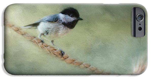 Chickadee At The Shore IPhone 6s Case by Jai Johnson