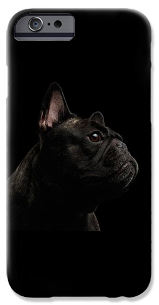 Dog iPhone 6s Case - Close-up French Bulldog Dog Like Monster In Profile View Isolated by Sergey Taran