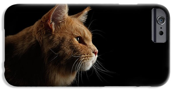 Cat iPhone 6s Case - Close-up Portrait Ginger Maine Coon Cat Isolated On Black Background by Sergey Taran