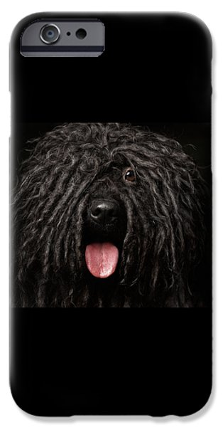 Close Up Portrait Of Puli Dog Isolated On Black IPhone 6s Case by Sergey Taran