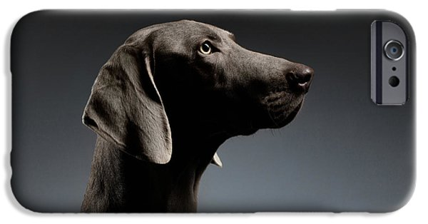 Close-up Portrait Weimaraner Dog In Profile View On White Gradient IPhone 6s Case