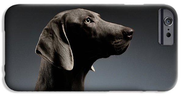 Dog iPhone 6s Case - Close-up Portrait Weimaraner Dog In Profile View On White Gradient by Sergey Taran