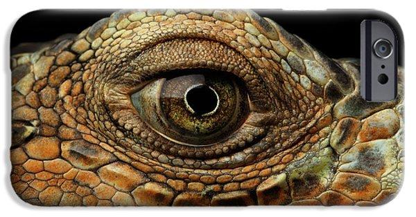 Closeup Eye Of Green Iguana, Looks Like A Dragon IPhone 6s Case by Sergey Taran