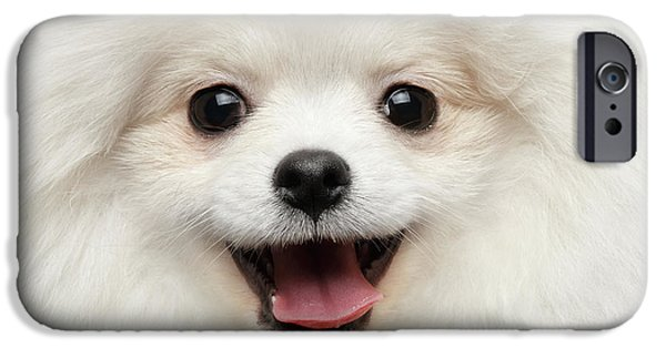 Closeup Furry Happiness White Pomeranian Spitz Dog Curious Smiling IPhone 6s Case by Sergey Taran