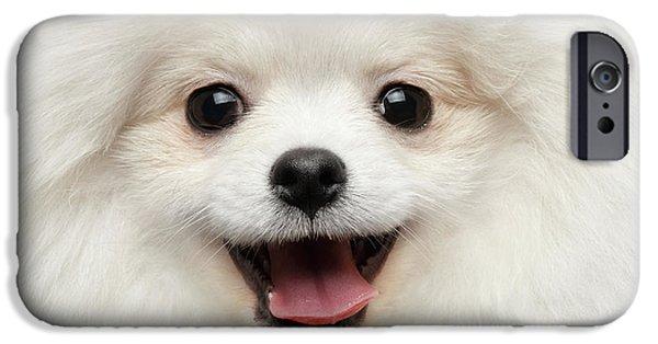 Dog iPhone 6s Case - Closeup Furry Happiness White Pomeranian Spitz Dog Curious Smiling by Sergey Taran