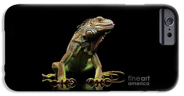 Closeup Green Iguana Isolated On Black Background IPhone 6s Case by Sergey Taran