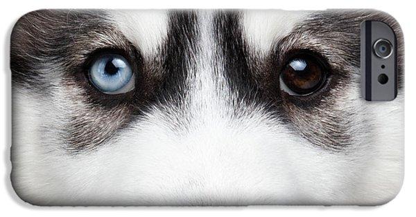 Dog iPhone 6s Case - Closeup Siberian Husky Puppy Different Eyes by Sergey Taran
